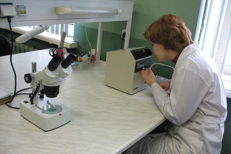 в лаборатории ВСЭ и ЛД
