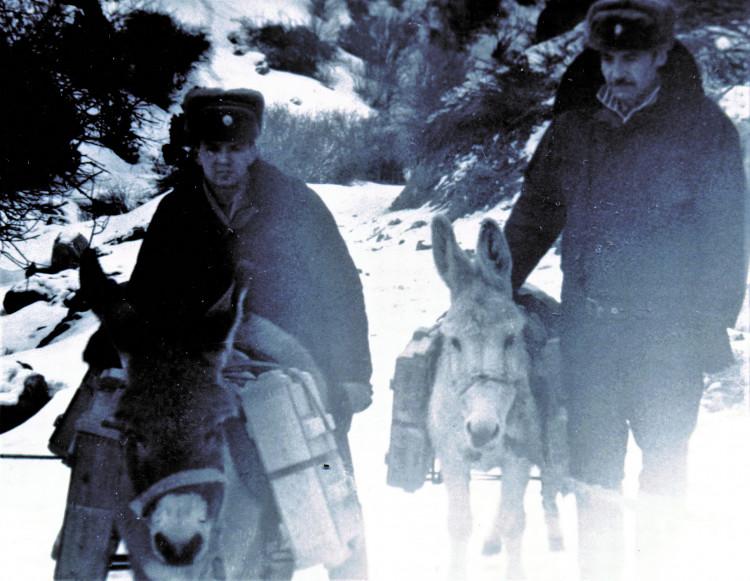 Транспортировка боеприпасов ослами (ишаками) для 40 ОА. военные ветеринары Владимир Белоусов, Александр Зимель. 1983 г