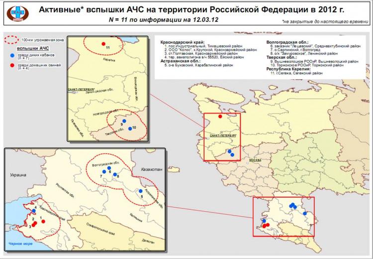 Вспышки АЧС на территории РФ