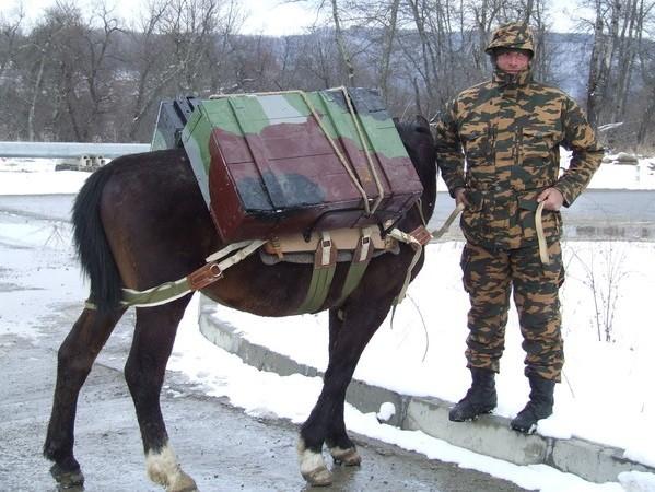 боец - коновод с лошадью и снаряжением