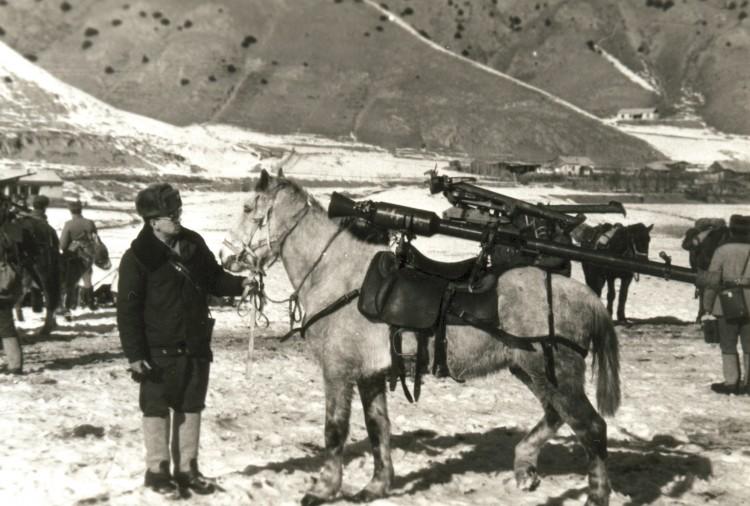 боевое снаряжение коня в отдельной горно-вьчной роте, ЗакВО Ахалкалаки. 1984г.