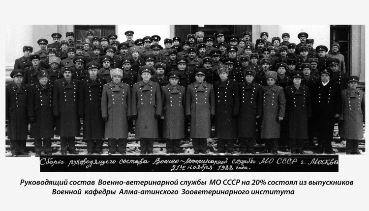 Выпускники АЗВИ в руководстве военной ветеринарии МО СССР и РФ