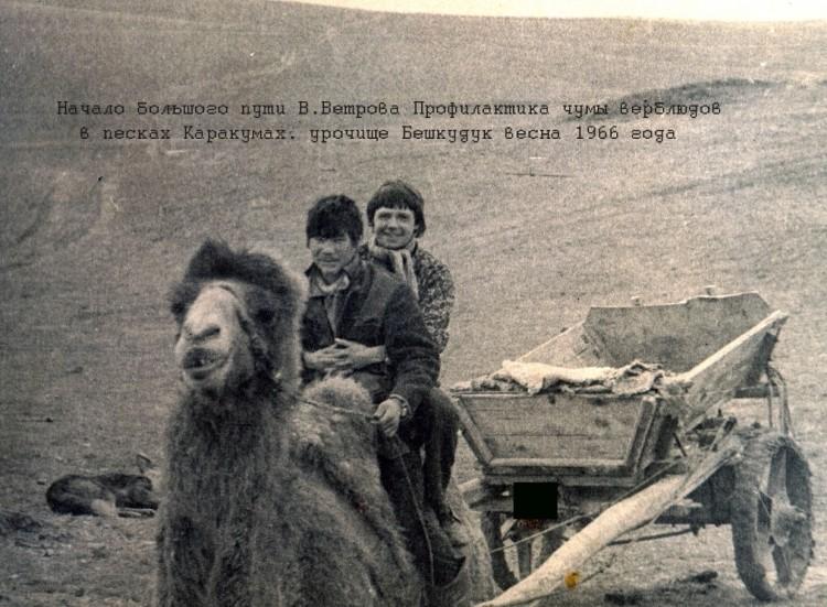 противоэпизоотические мероприятия в Средней Азии