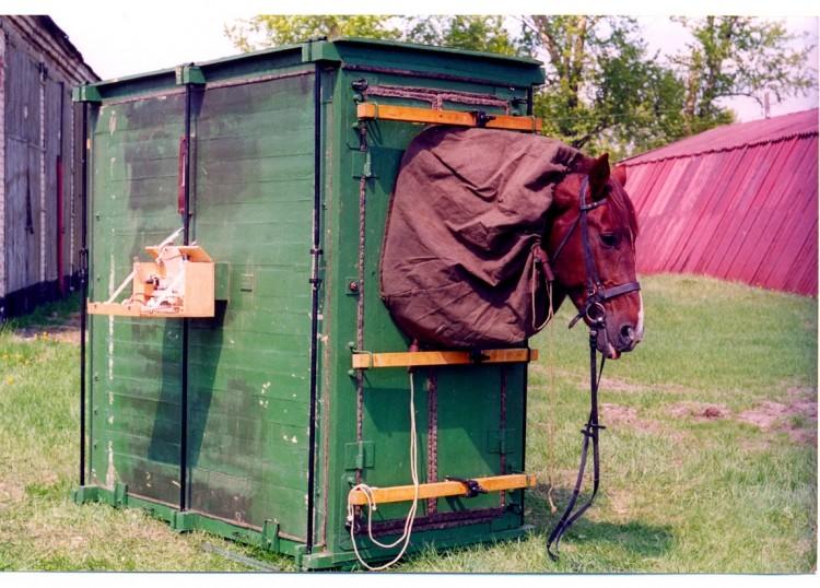 камера газоокуривания лошадей