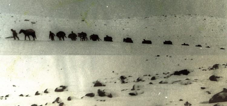 Отдельная въючно-транспортная рота на марше, массив Бадахшан 1982г